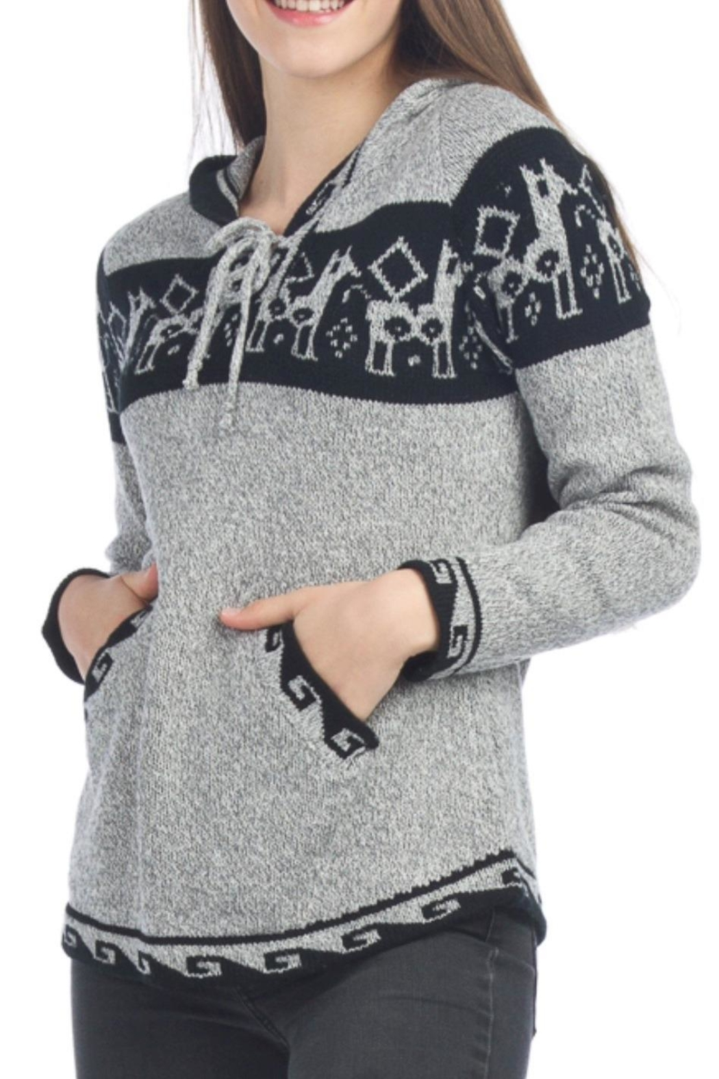Papillon Amazing Soft  Hoodie - Front Cropped Image