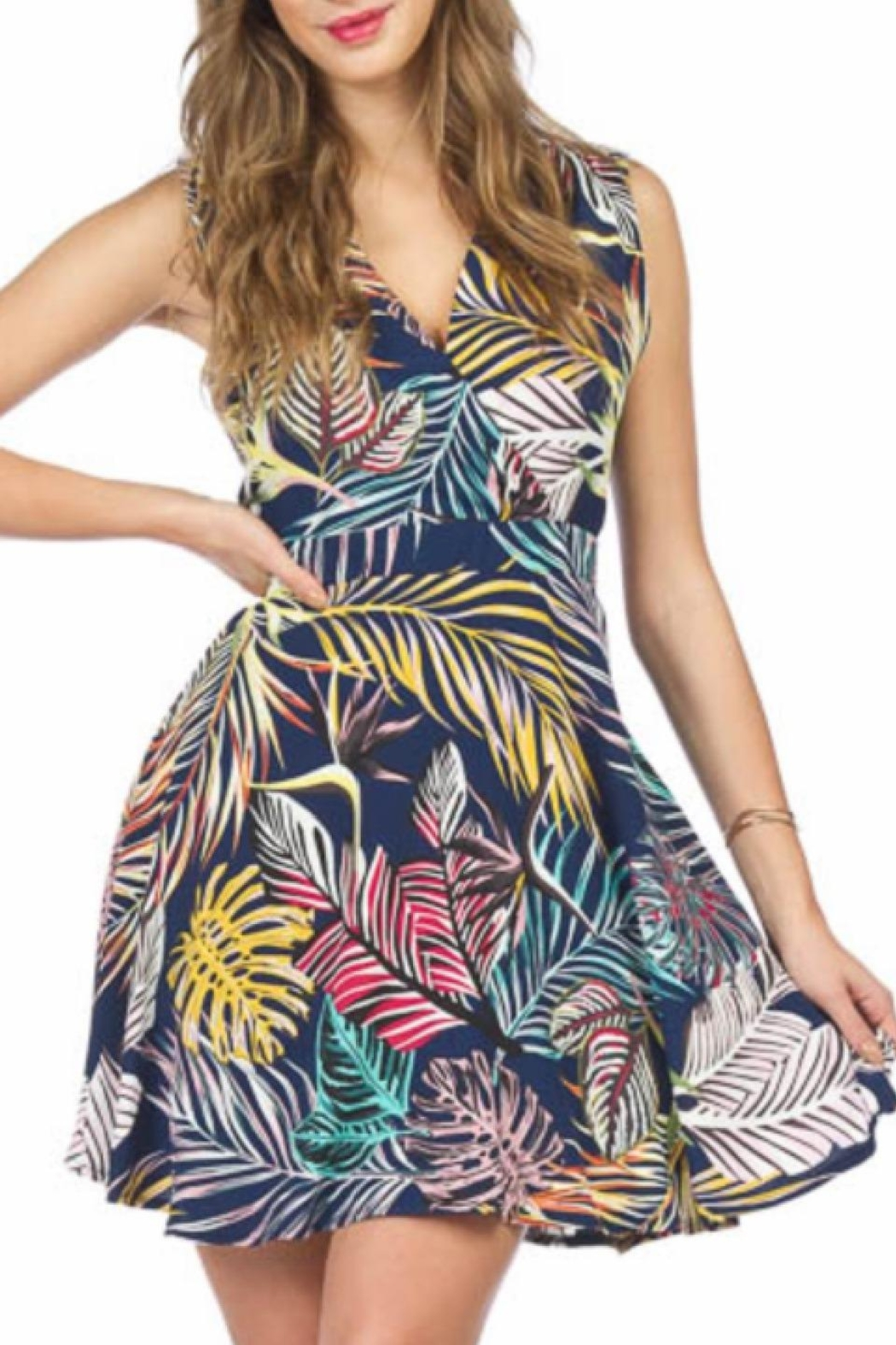 Papillon Fit And Flare Dress - Main Image