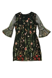 Papillon Floral Embroidered Dress - Front cropped