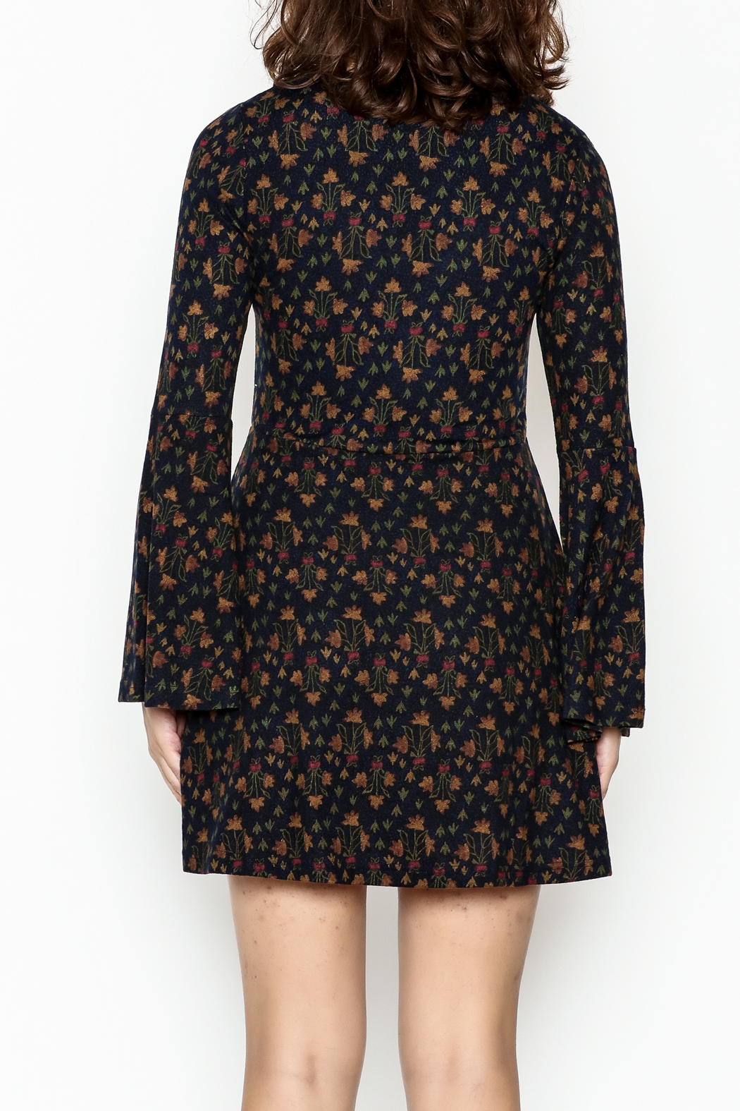 Papillon Floral Swing Dress - Back Cropped Image