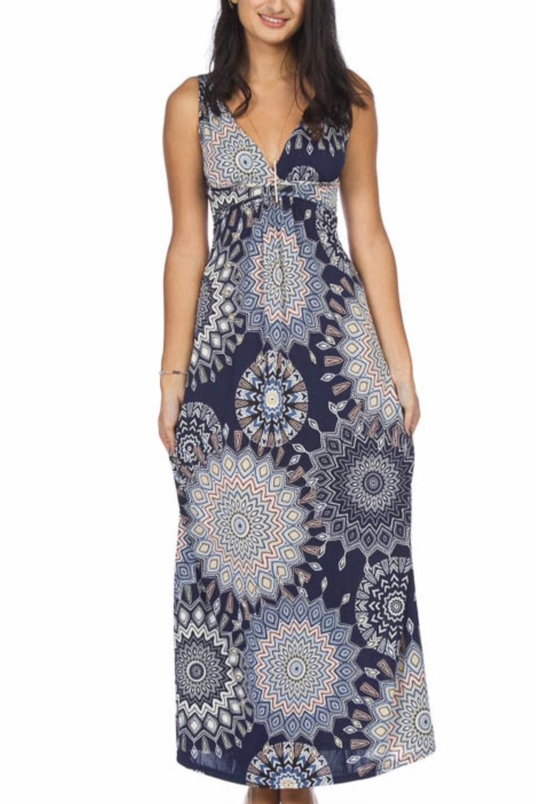 Papillon Sarburst Maxi Dress - Front Cropped Image