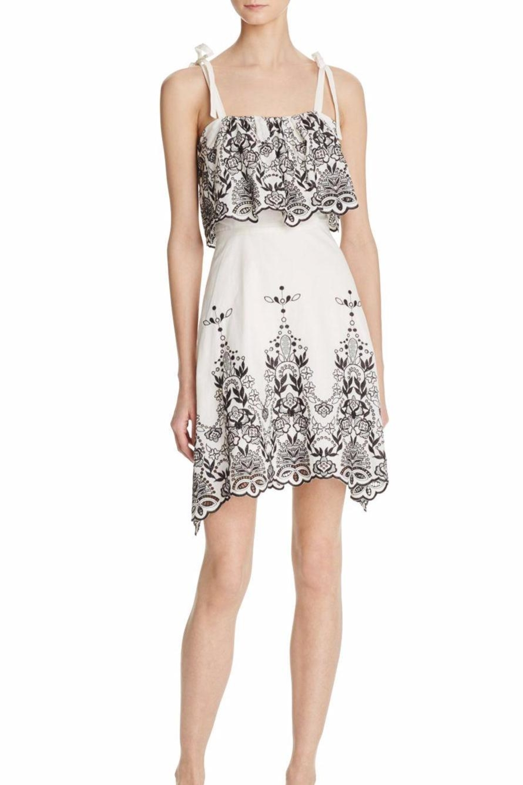 Parker Nia Eyelet Dress - Front Cropped Image
