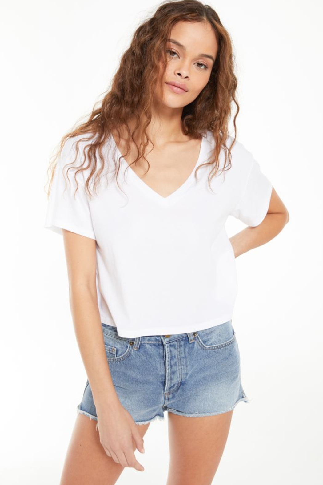 z supply Parker Organic V-Neck Tee - Front Cropped Image