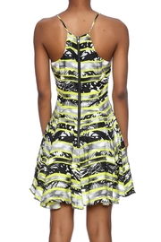 Parker Quintin Dress - Front full body