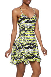 Parker Quintin Silk Dress - Product Mini Image