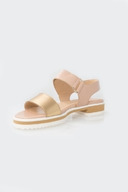 Parlanti Tan Sandal - Product Mini Image