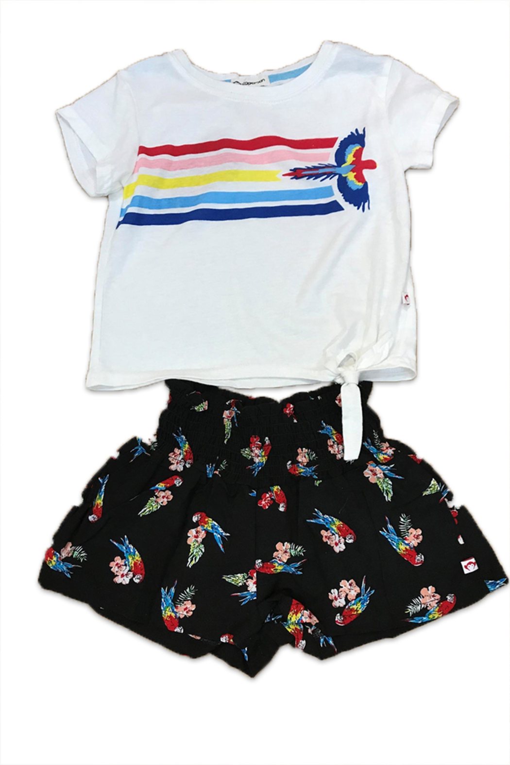 Appaman Parrot Stripe T-Shirt - Front Cropped Image