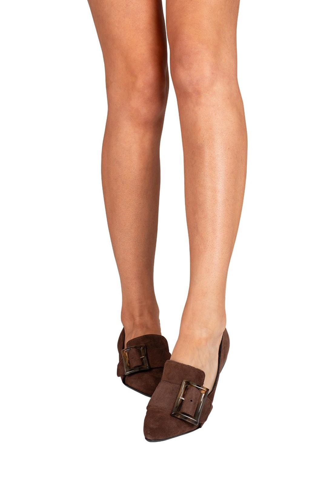 Pascucci Chocolate Suede Loafer - Back Cropped Image