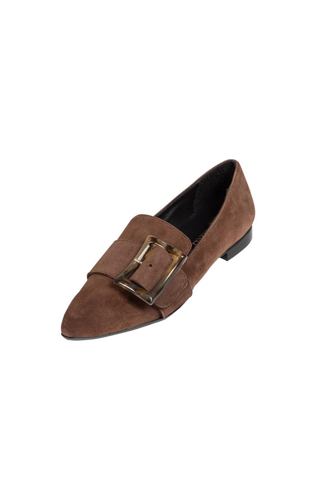 Pascucci Chocolate Suede Loafer - Front Full Image