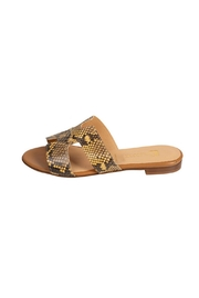 Pascucci Cream Snake-Skin H-Slides - Front cropped
