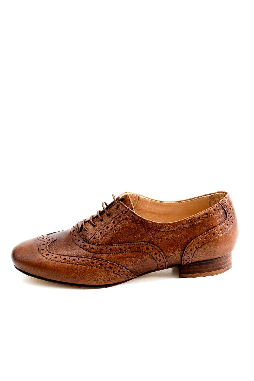 Pascucci Handmade Italian Brogue - Front Cropped Image