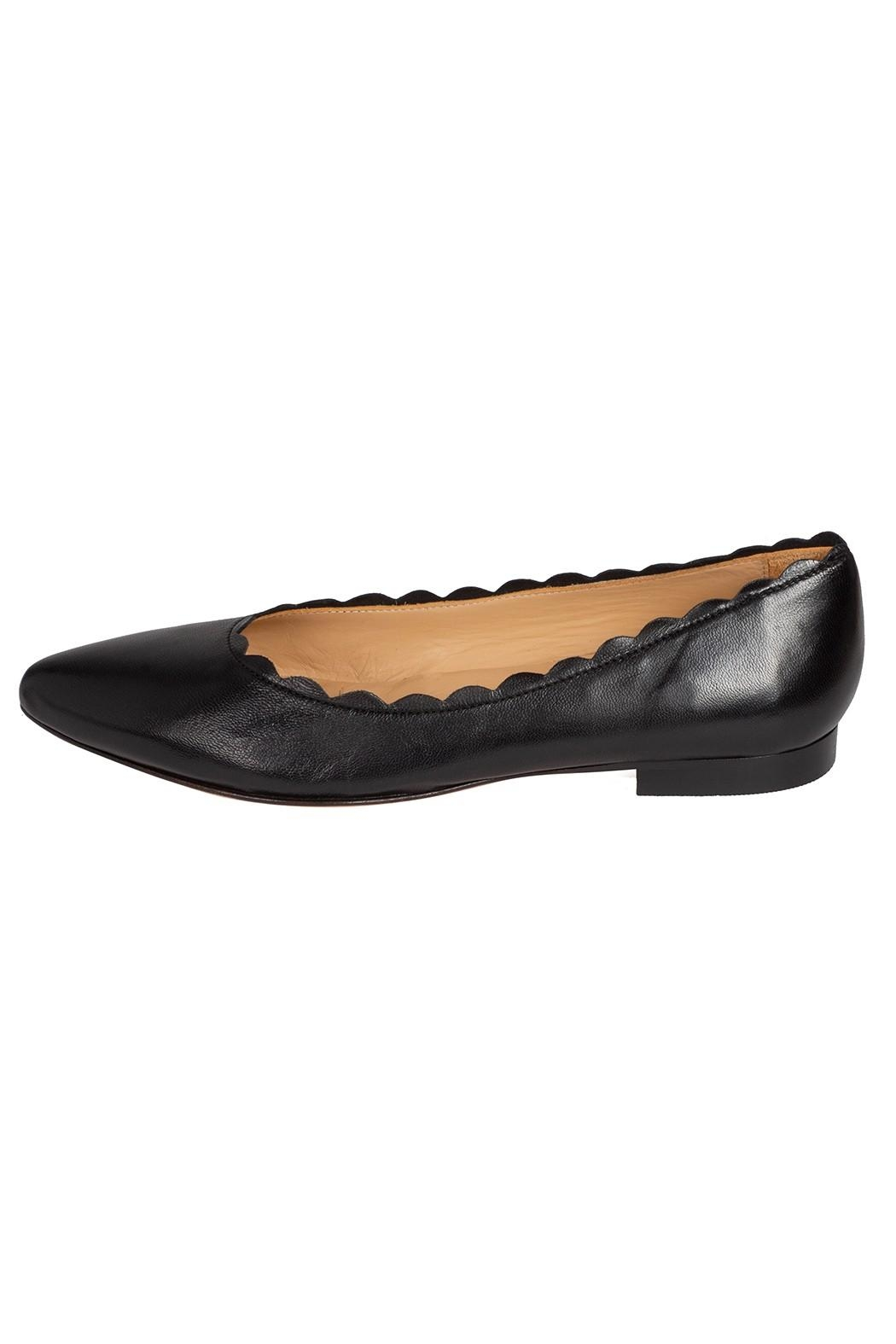 Pascucci Leather, Black, Ballet-Flats - Front Cropped Image