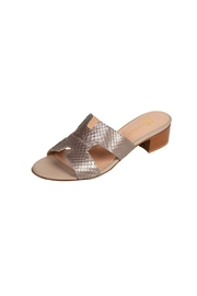 Pascucci Metallic-Taupe Snakeskin H-Slides - Front full body