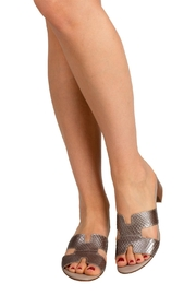 Pascucci Metallic-Taupe Snakeskin H-Slides - Back cropped