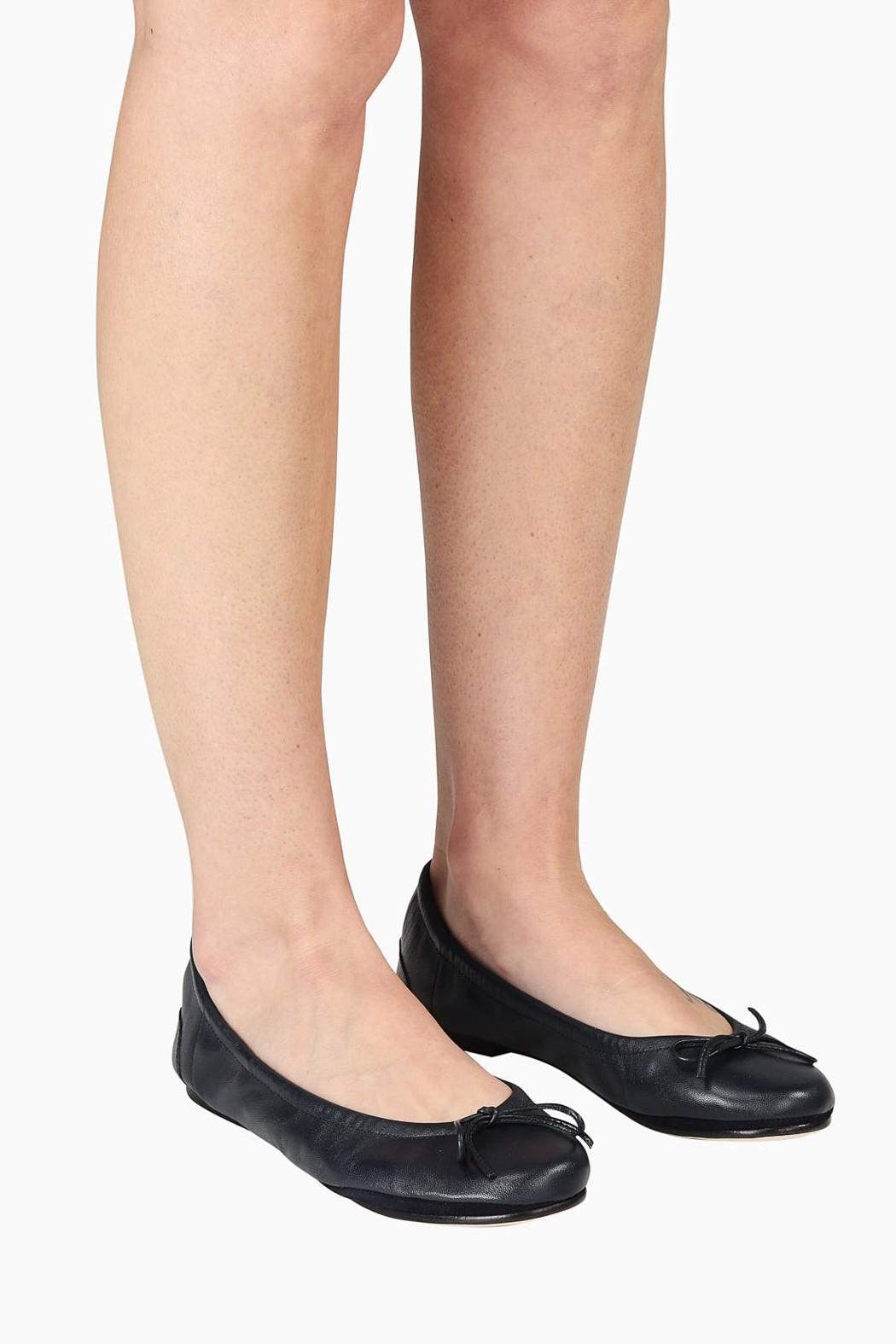 Pascucci Navy Ballet Flats - Back Cropped Image