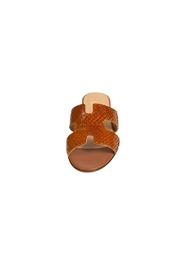 Pascucci Tan Snake-Skin H-Slide - Side cropped