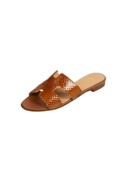 Pascucci Tan Snake-Skin H-Slide - Front full body