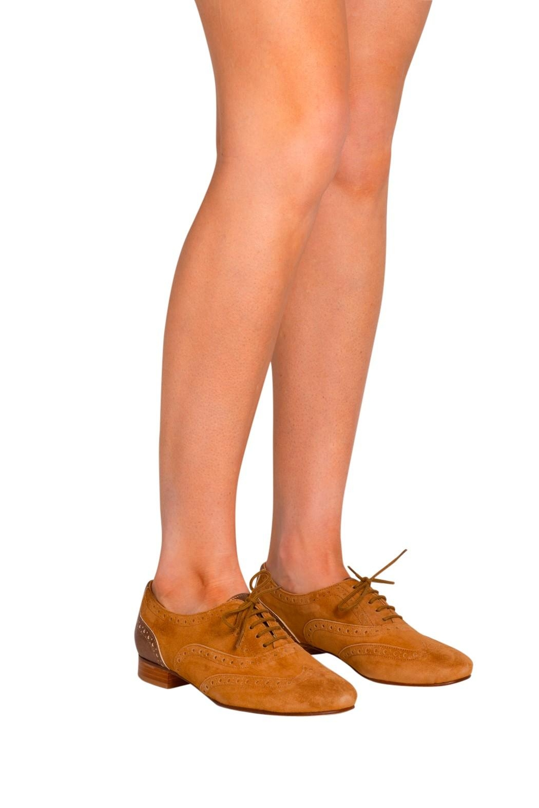 Pascucci Tan Suede Brogues - Back Cropped Image