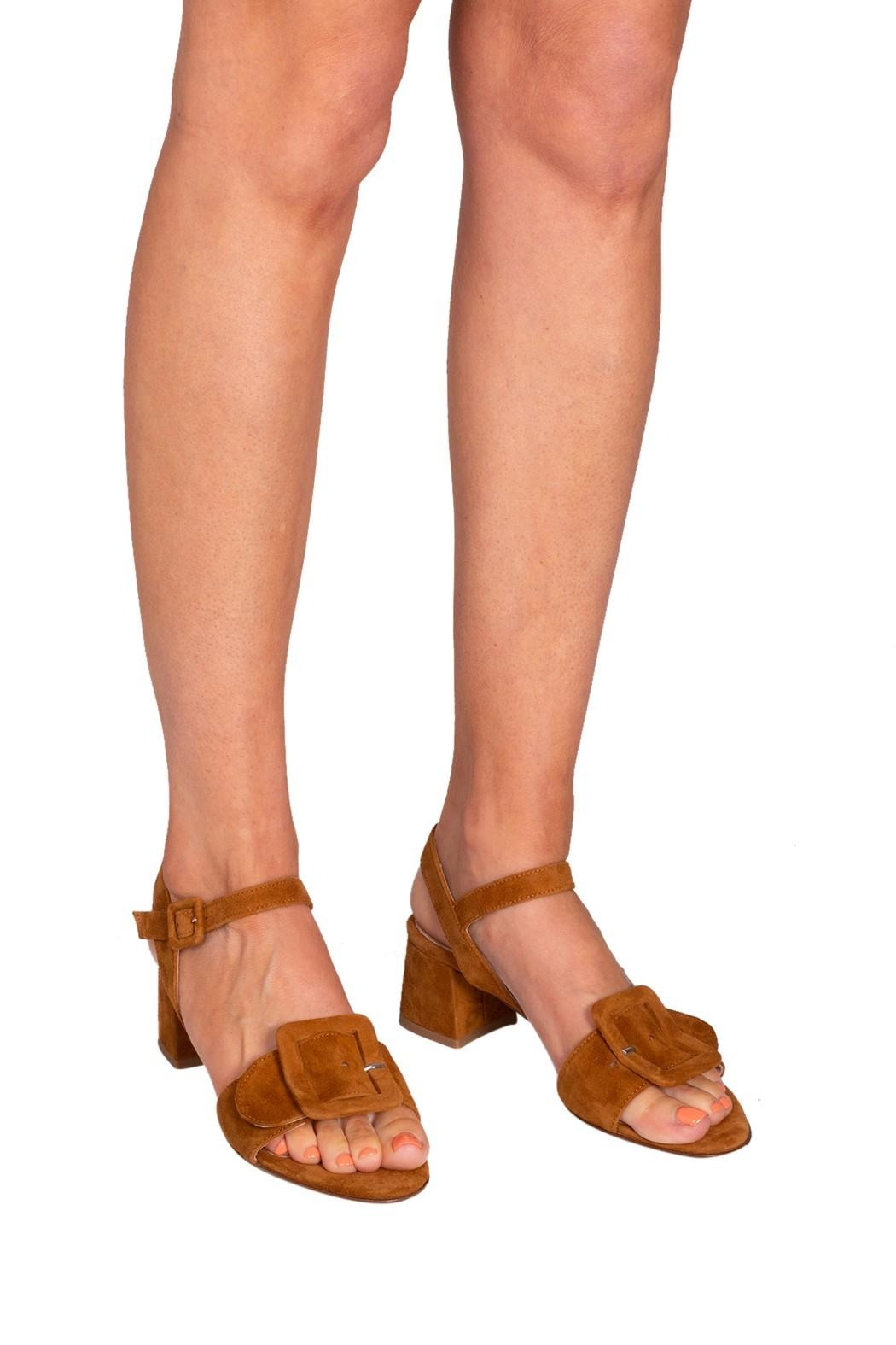 Pascucci Tan Suede Sandals - Back Cropped Image