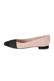 Pascucci Two-Tone Ballet Flats - Front cropped