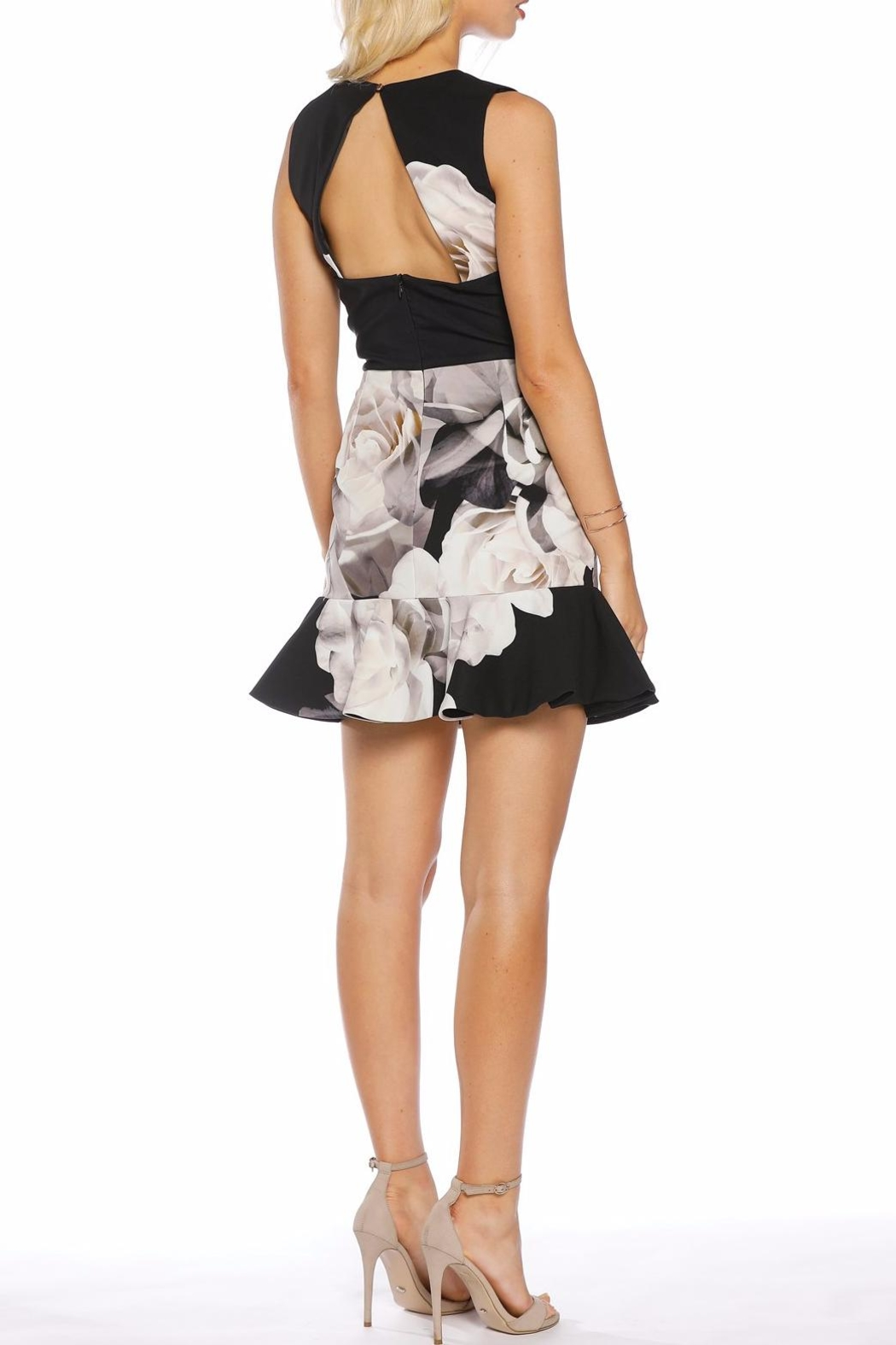 Pasduchas Charmer Flip Dress - Side Cropped Image
