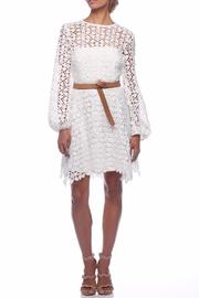 Pasduchas Plume Dress - Product Mini Image
