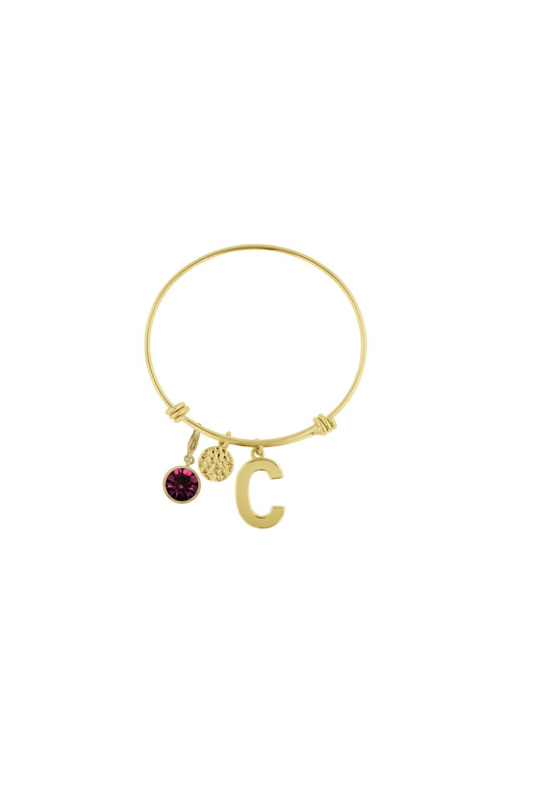 Passiana Amethyst Initial Bangle - Side Cropped Image