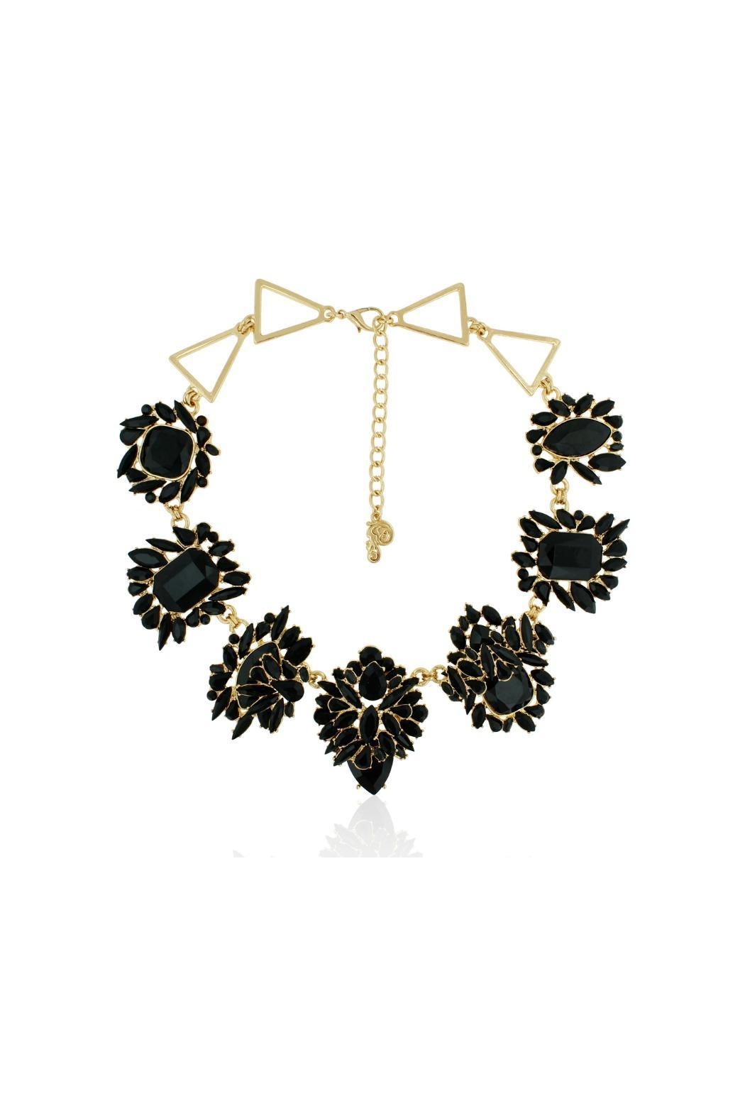 Passiana Black Onyx Necklace - Front Cropped Image