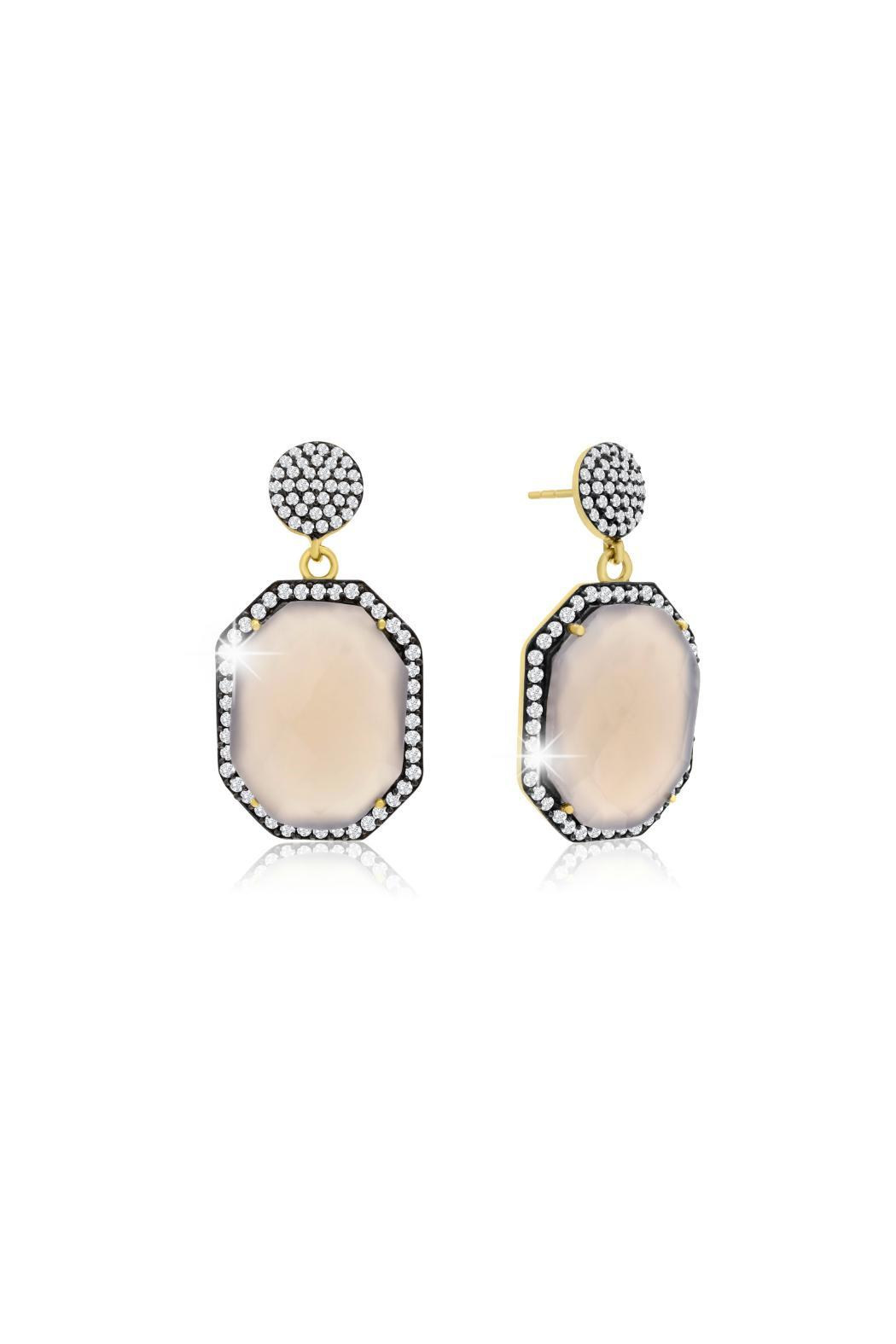 Passiana Gray Moonstone Earrings - Main Image