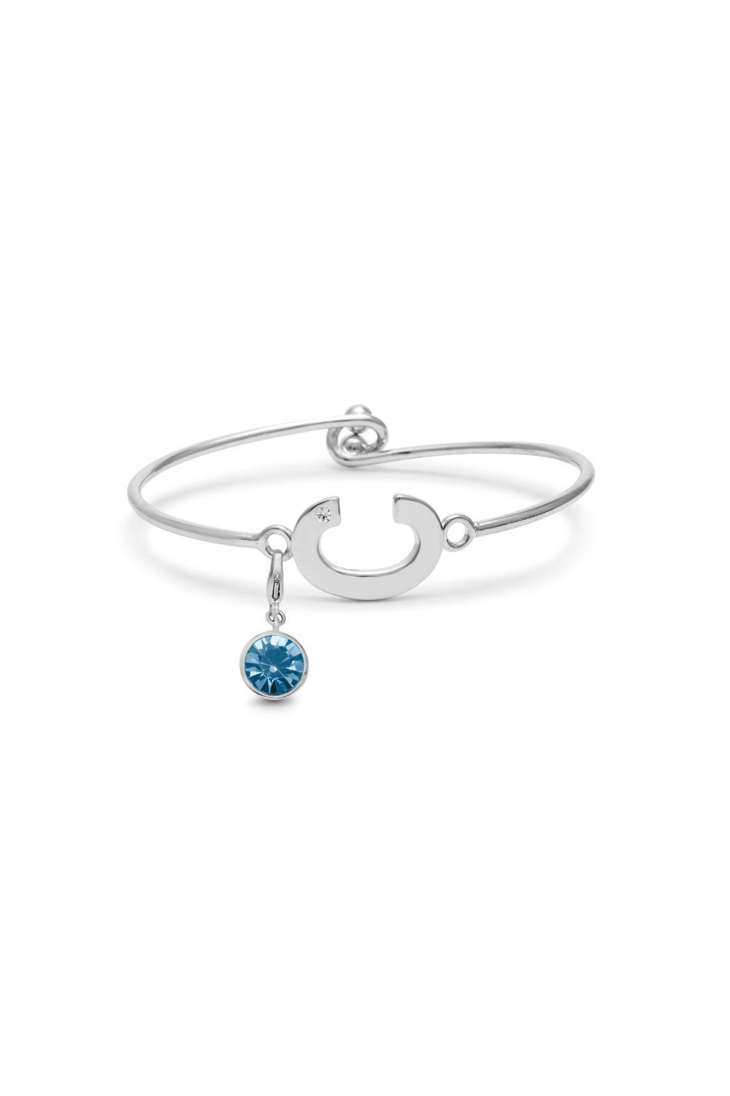 Passiana March Birthstone Bracelet - Side Cropped Image