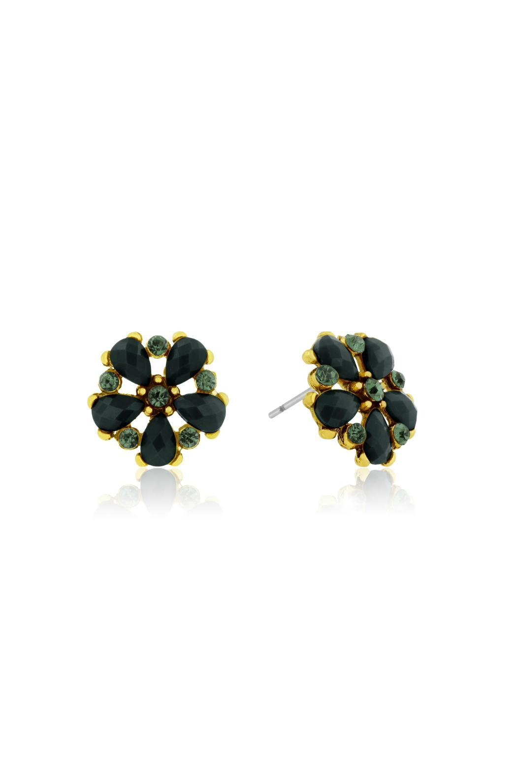 Passiana Onyx Crystal Studs - Front Full Image