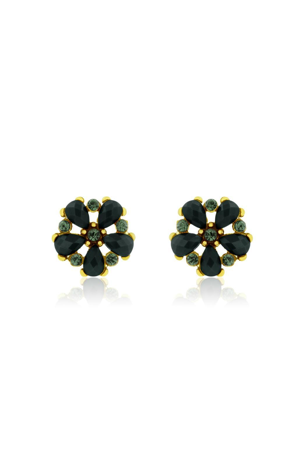 Passiana Onyx Crystal Studs - Front Cropped Image