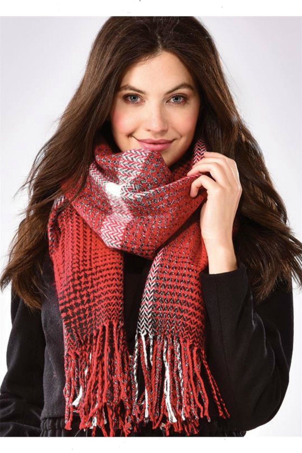 Charlie Paige Patterned Scarf - Main Image
