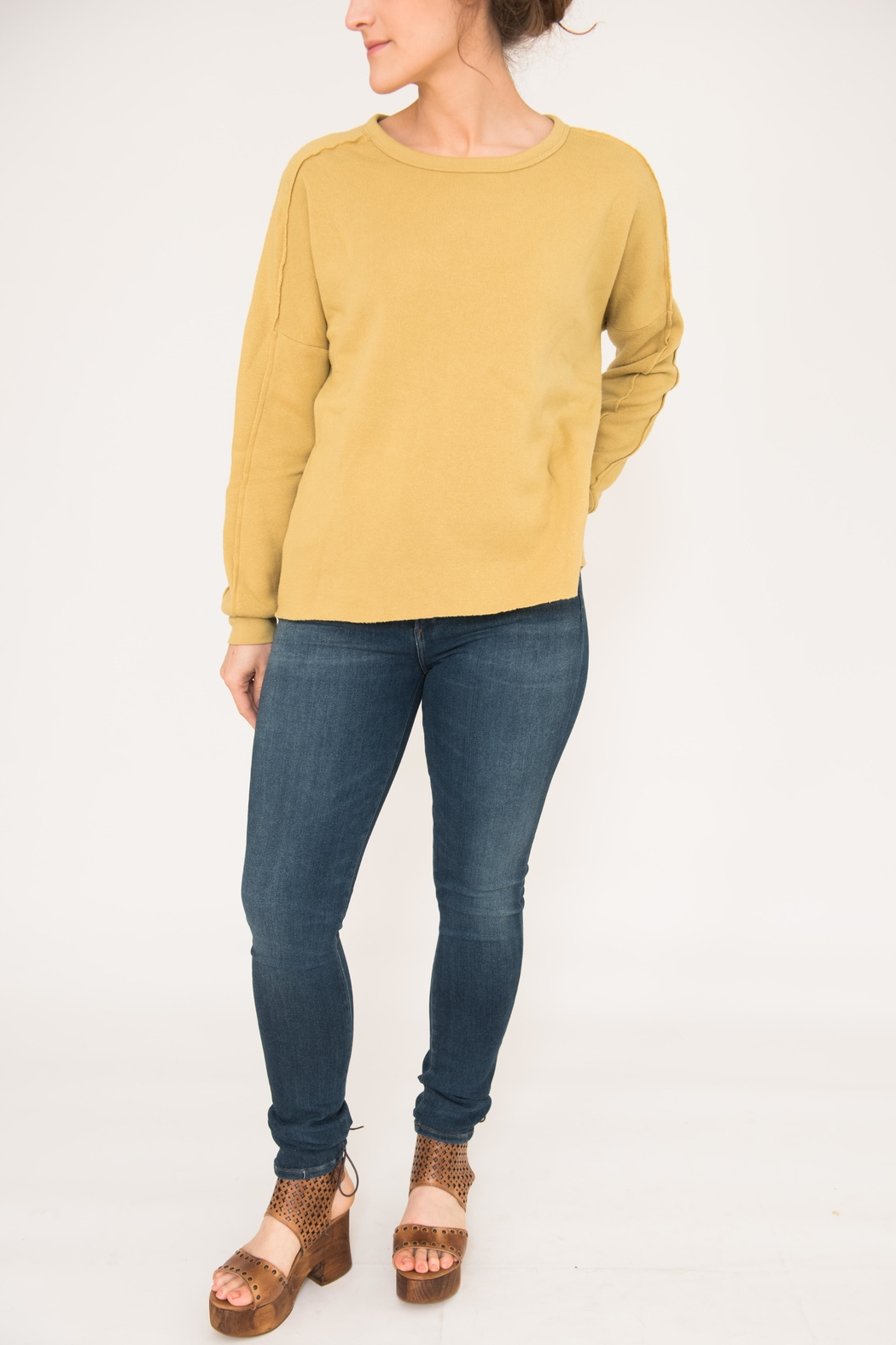 Project Social T Paw Paneled Sweatshirt - Front Cropped Image
