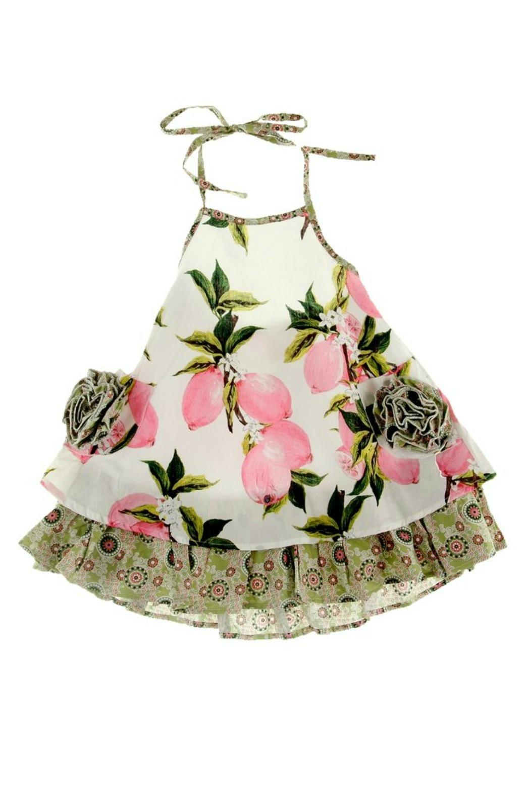 Gurly Bird Peach-Floral-Southern-Belle-Halter-Dress - Back Cropped Image