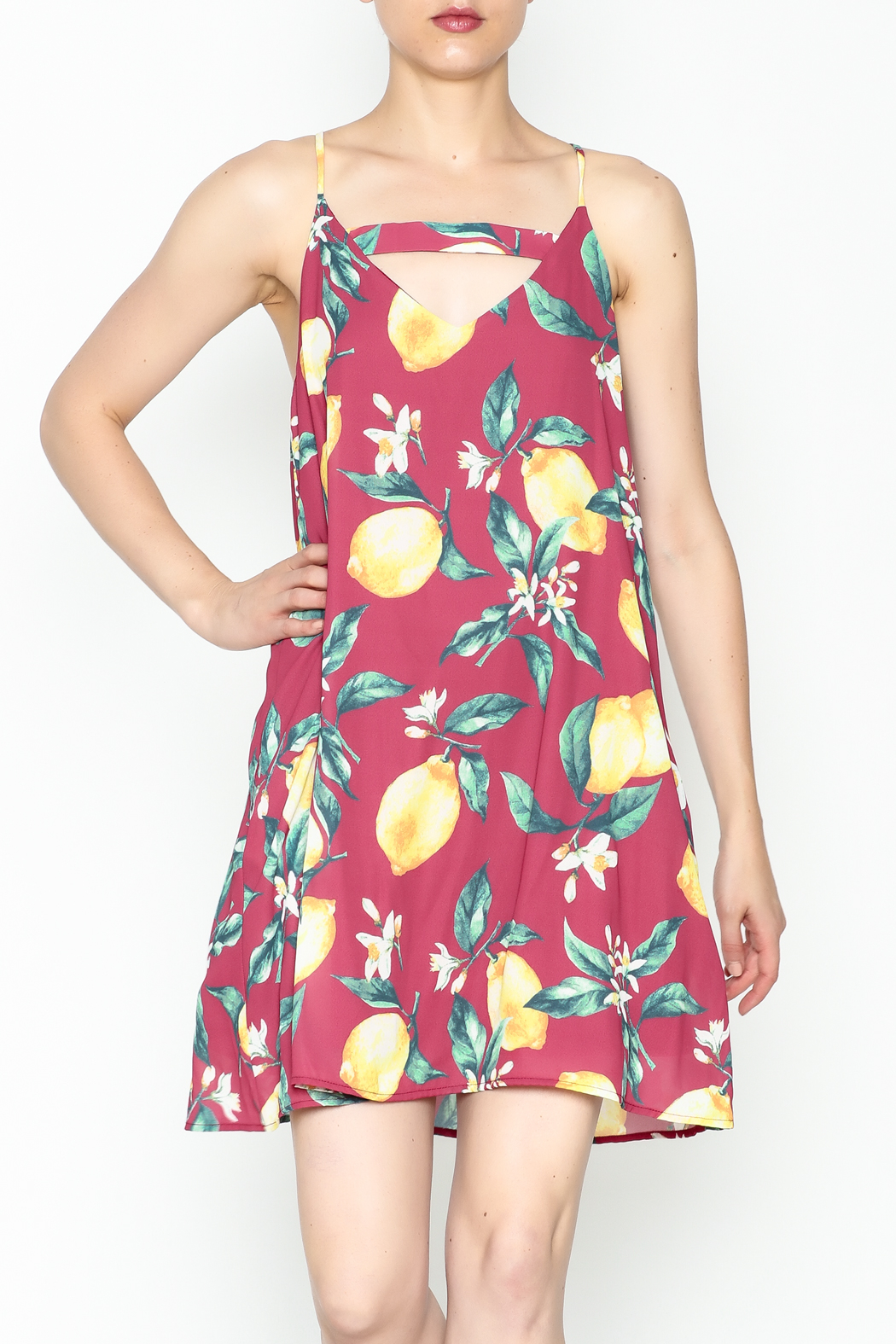 Peach Love California Lemon Print Dress - Front Cropped Image