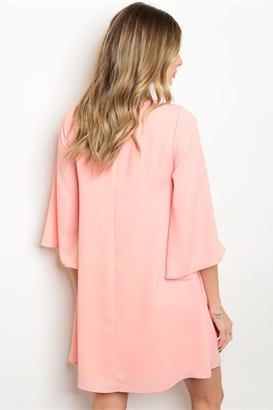 Pink Owl Apparel  Peach Shift Dress - Front Full Image