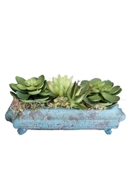 Peacock Park Oval Footed Planter - Front cropped