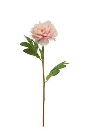 A&B Home Peony Stem - Front cropped