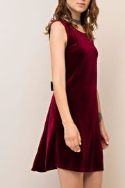 People Outfitter Alastair Velvet Dress - Front cropped