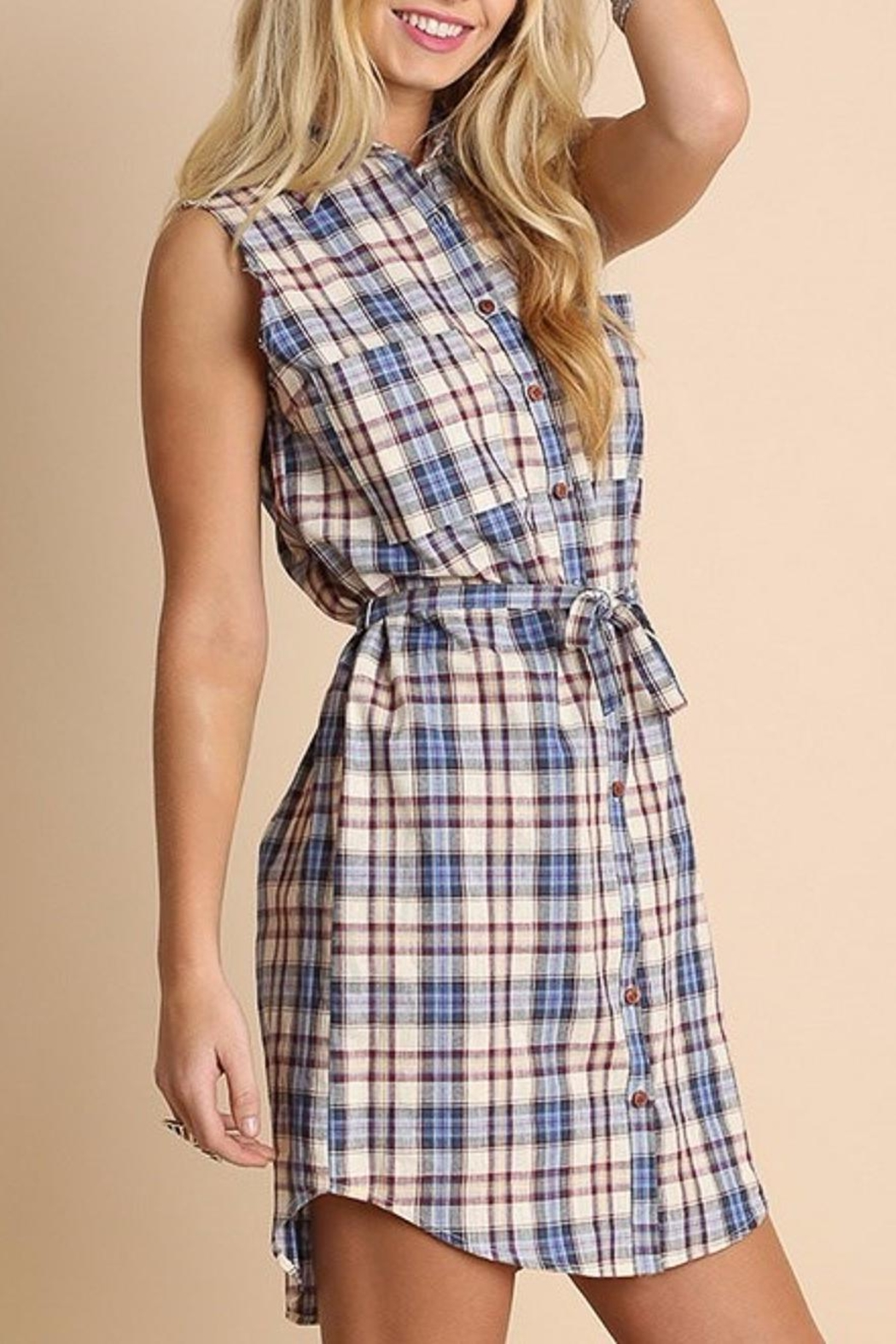 People Outfitter Anytime Plaid Dress - Main Image