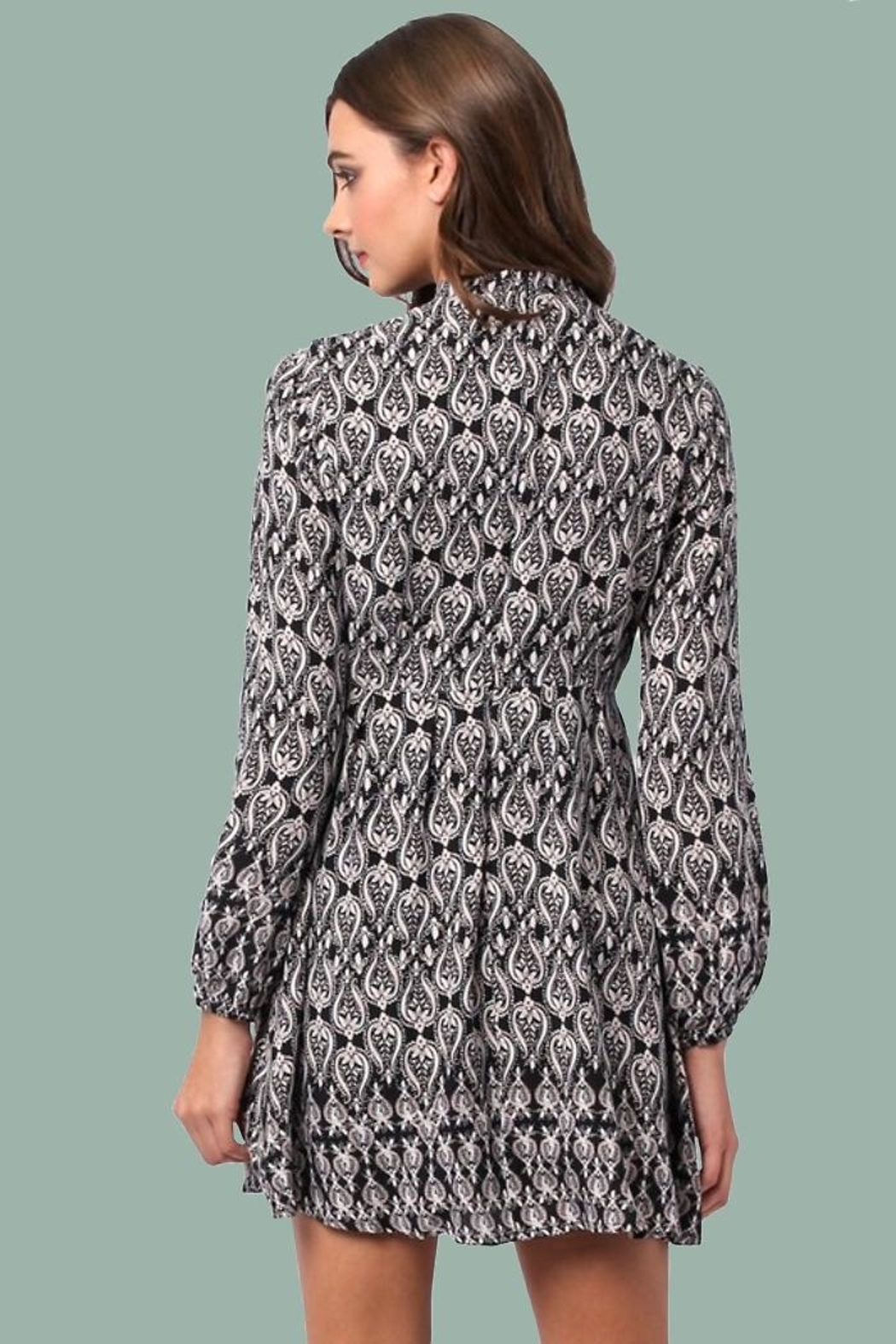 People Outfitter Daniella Mini Dress - Front Full Image