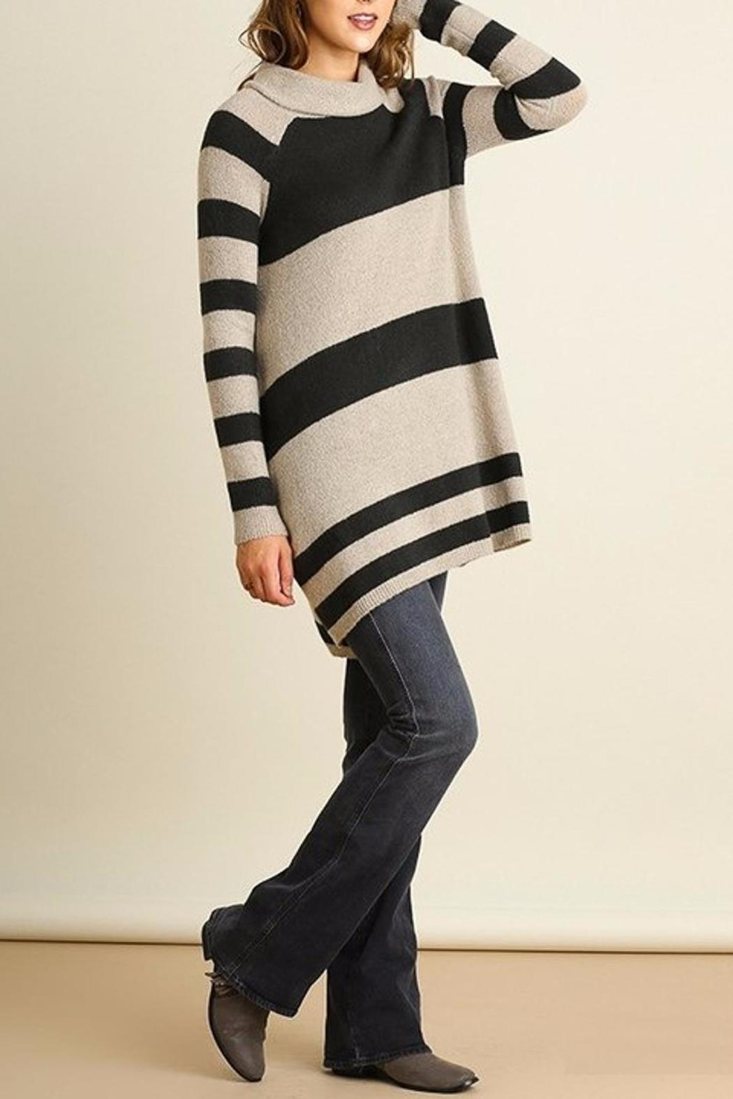 People Outfitter Stripe Knit Tunic - Back Cropped Image