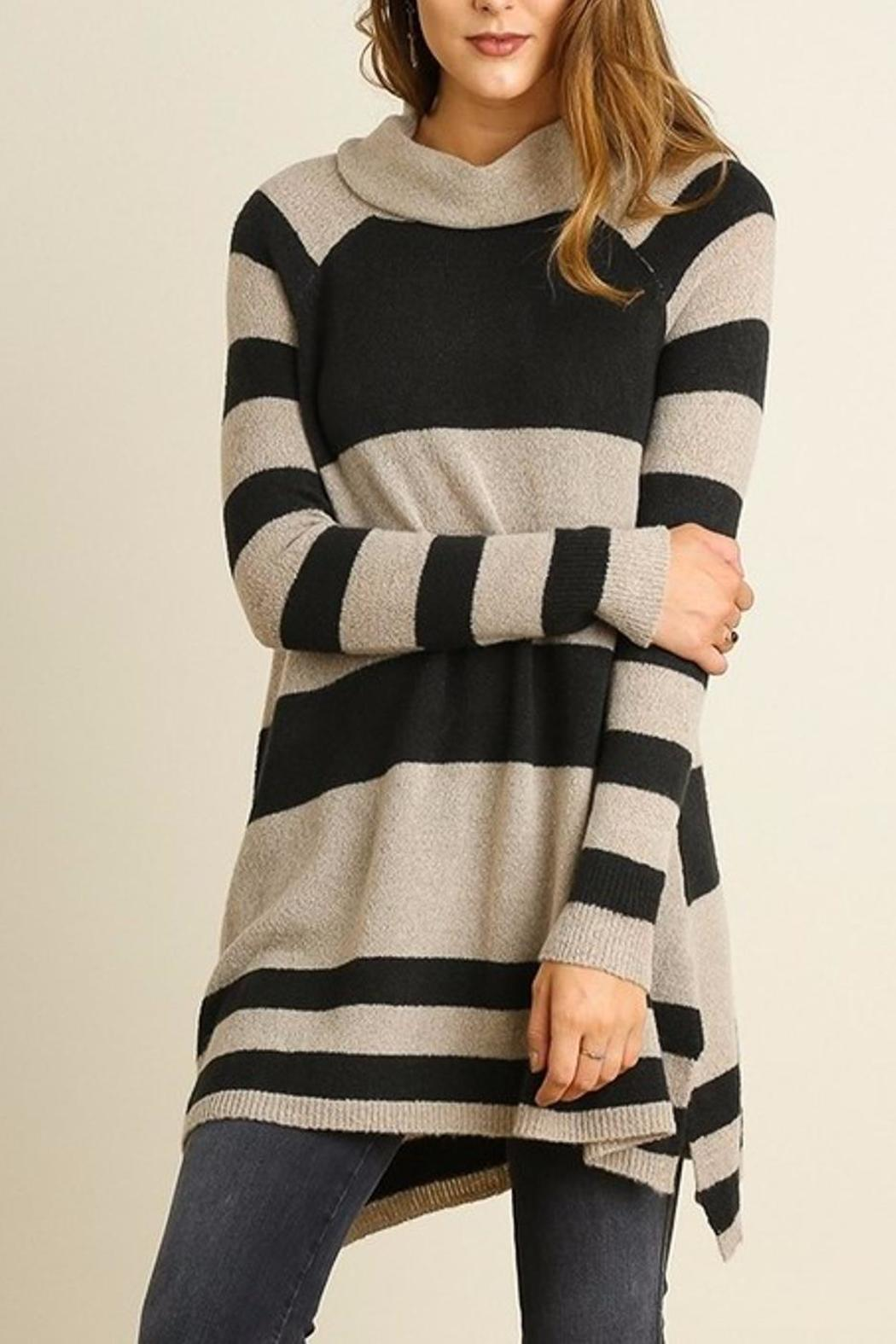 People Outfitter Stripe Knit Tunic - Main Image