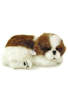 Shoptiques Product: Perfect Petzzz Shihtzu