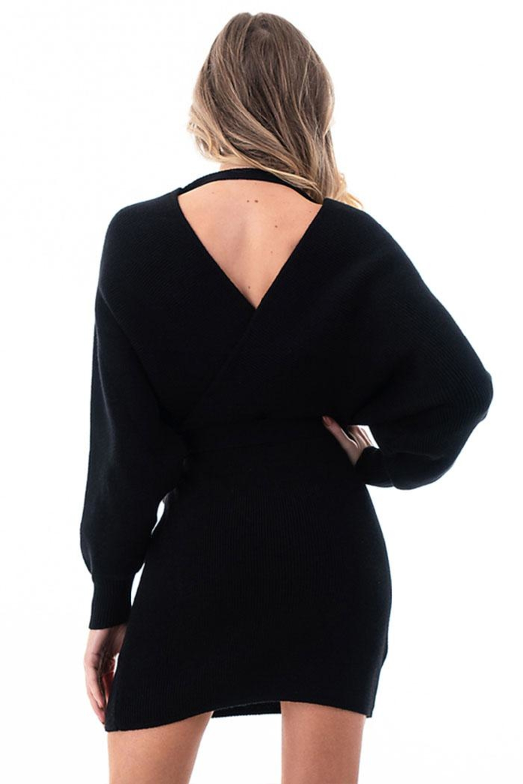 Petalroz V-Neck Sweater Dress - Front Full Image