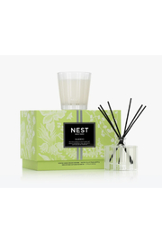 Nest Fragrances PETITE CANDLE AND REED DIFFUSER SET/BAMBOO - Front cropped