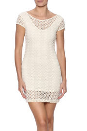 Petunias Crochet Lace Dress - Product Mini Image