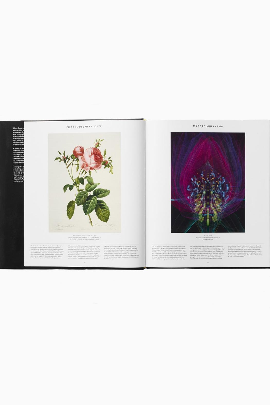 Phaidon Books Plant Book - Front Full Image