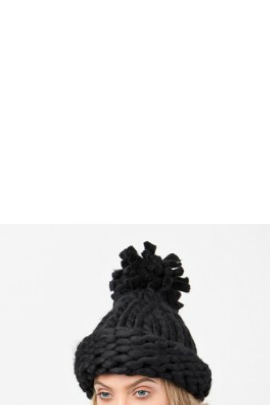 Pia Rossini Chunky Knit Hat - Front Cropped Image